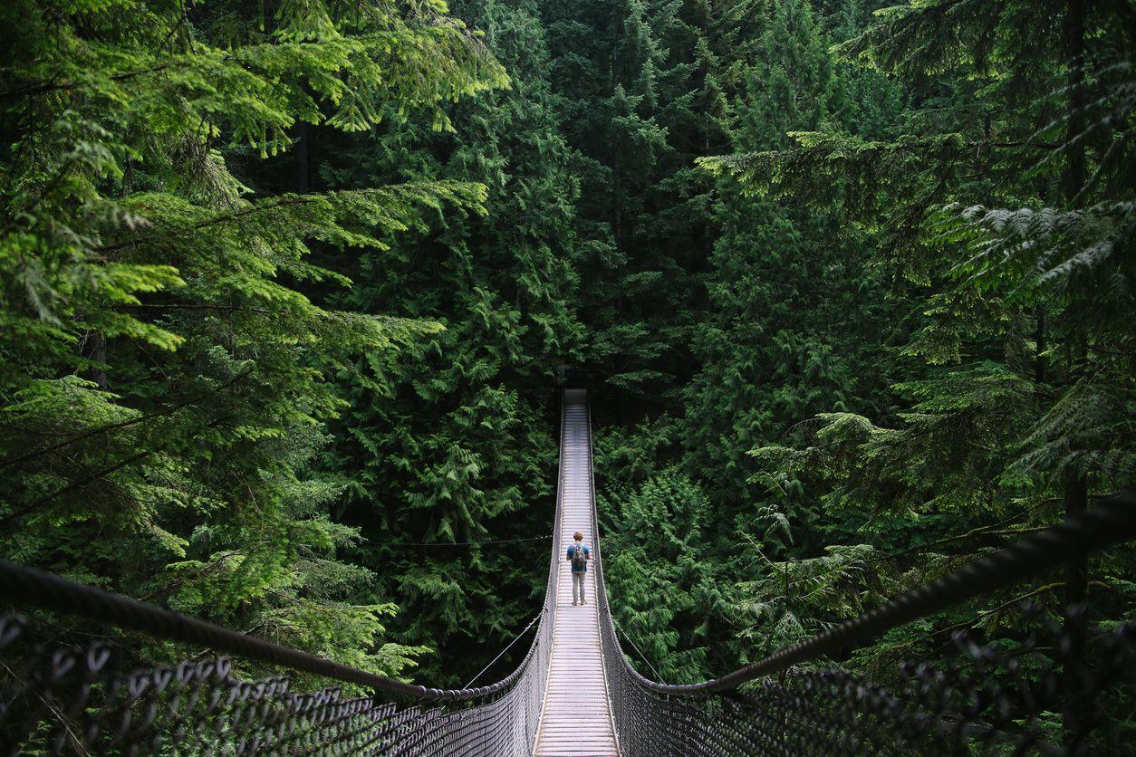 long hanging bridge